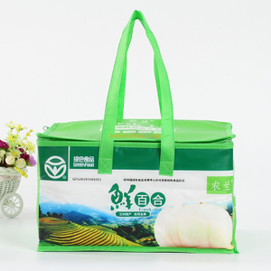 Factory best selling green recycle large shoulder strap polyester material refrigerated insulation carry tote oval cooler bag